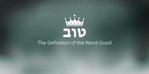 the-definition-of-the-word-good
