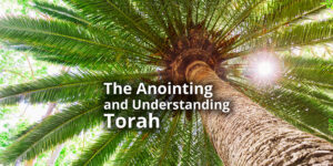 The-Anointing-and-Understanding-Torah
